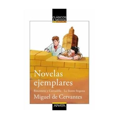 Novelas ejemplares - Rinconete y Cortadillo. La ilustre fregona. Miguel de Cervantes.