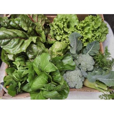 Cesta de verduras de tempada producidas en ecolóxico